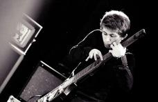 Chapman Stick - www.janvrhovnik.co.uk